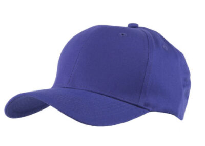 Purple Baseball hat 6 panel for protection visor
